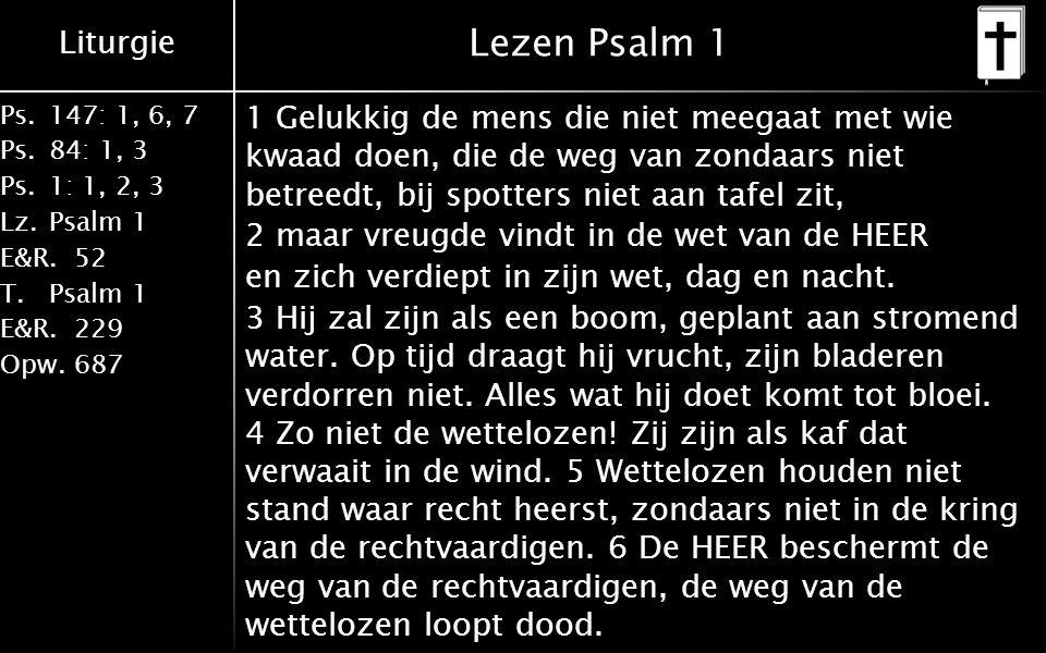 Liturgie Ps.147: 1, 6, 7 Ps. 84: 1, 3 Ps. 1: 1, 2, 3 Lz. Psalm 1 E&R.52 T.Psalm 1 E&R.229 Opw.687 Lezen Psalm 1 1 Gelukkig de mens die niet meegaat me