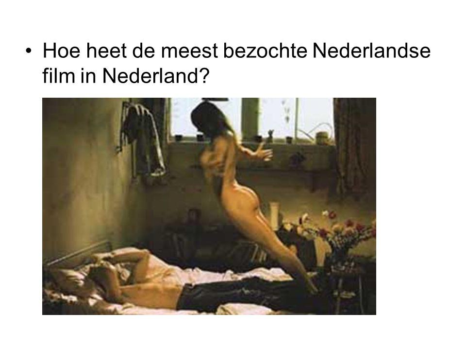 Hoe heet de meest bezochte Nederlandse film in Nederland?