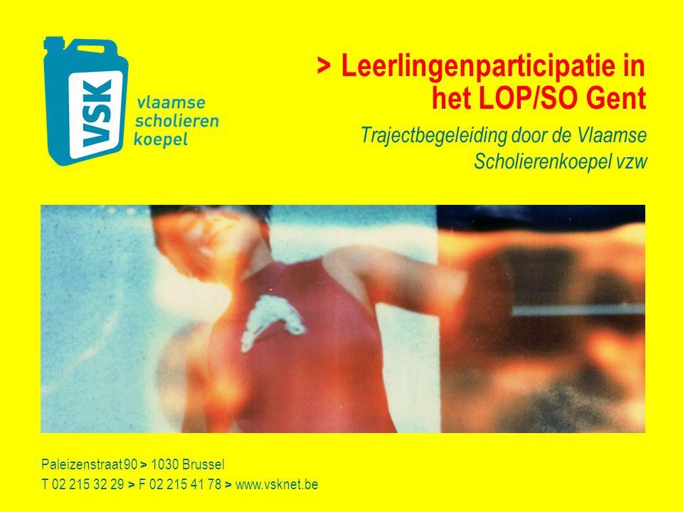 Vlaamse Scholierenkoepel > > Leerlingenparticipatie in het LOP/SO Gent > AV 9 december 2008 Vlaamse Scholierenkoepel vzw (VSK) > koepel van leerlingenraden > spreekbuis van scholieren