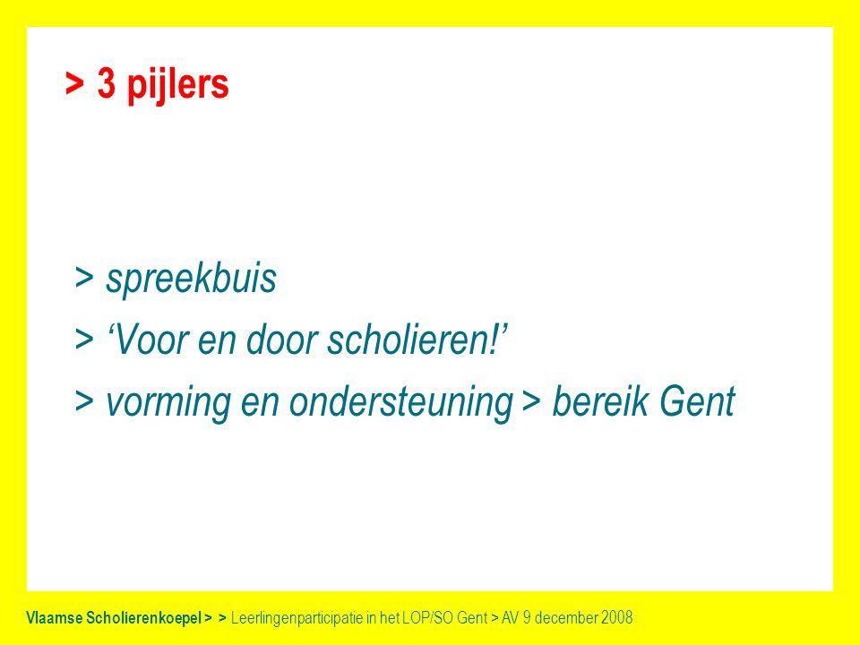 Vlaamse Scholierenkoepel > > Leerlingenparticipatie in het LOP/SO Gent > AV 9 december 2008 VSK en GOK > begeleider diversiteit > begeleiden en ondersteunen van de leerlingenparticipatie in het LOP