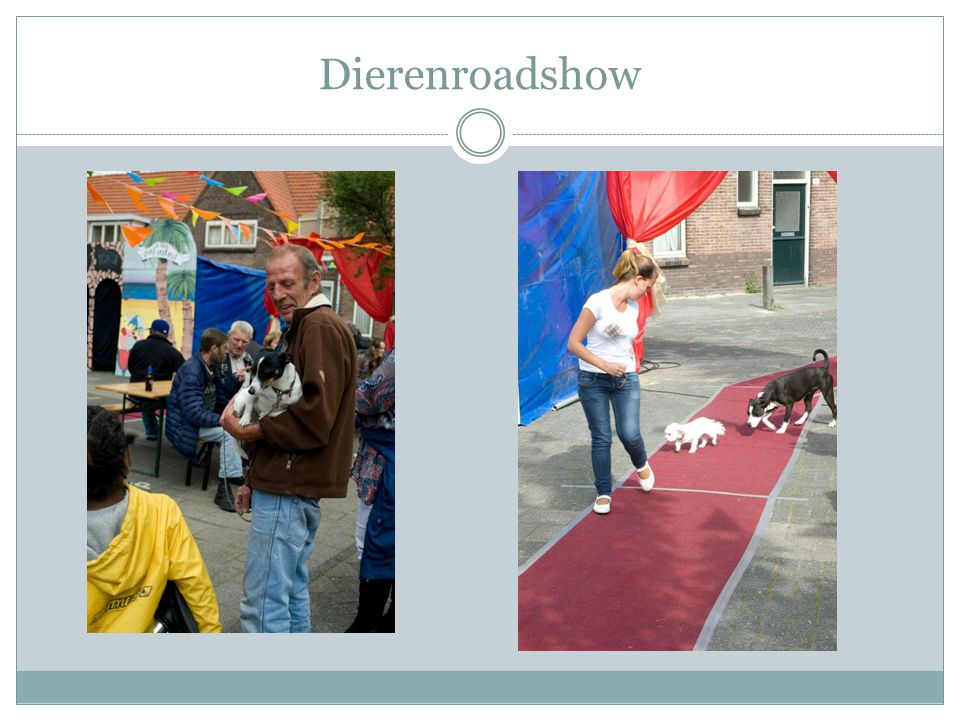 Dierenroadshow