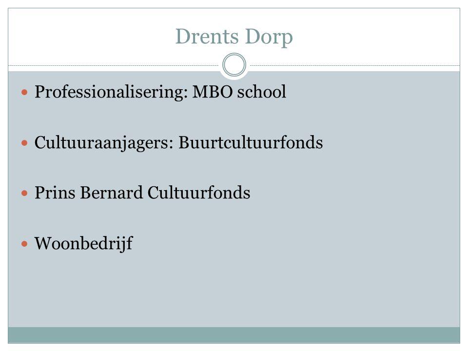 Drents Dorp Professionalisering: MBO school Cultuuraanjagers: Buurtcultuurfonds Prins Bernard Cultuurfonds Woonbedrijf