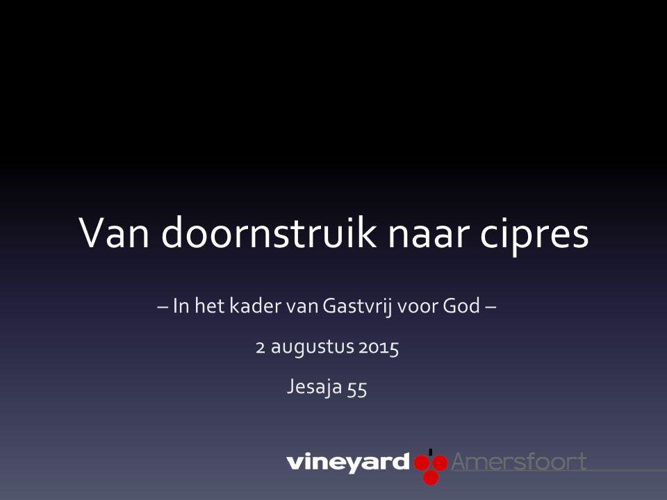 Van doornstruik naar cipres – In het kader van Gastvrij voor God – 2 augustus 2015 Jesaja 55