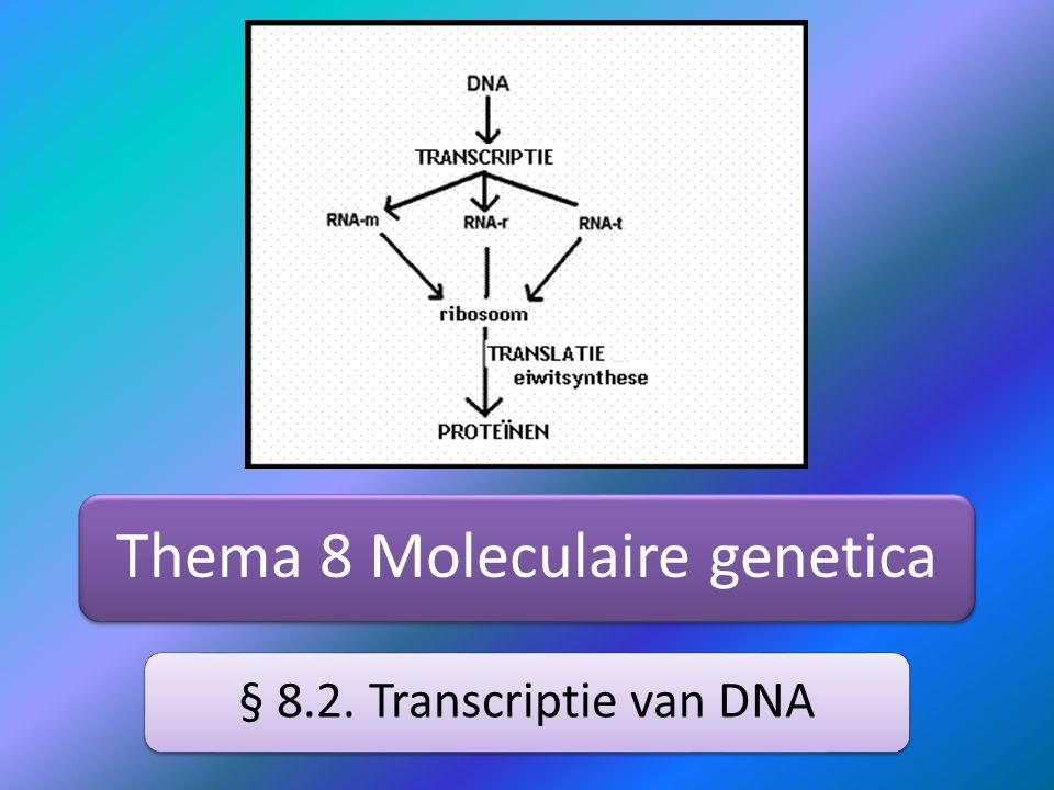 Informatieoverdracht DNA naar cel Cel heeft een bepaald eiwit nodigCel stuurt een signaal naar de celkernDNA wordt opengemaakt voor het coderende genEén streng wordt gekopieerd als RNA = transcriptieRNA-streng verlaat de kern met de informatieRibosomen lezen dit mRNA  eiwitsynthese