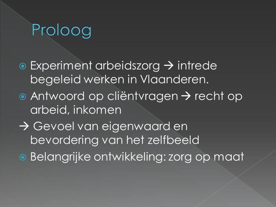  Experiment arbeidszorg  intrede begeleid werken in Vlaanderen.