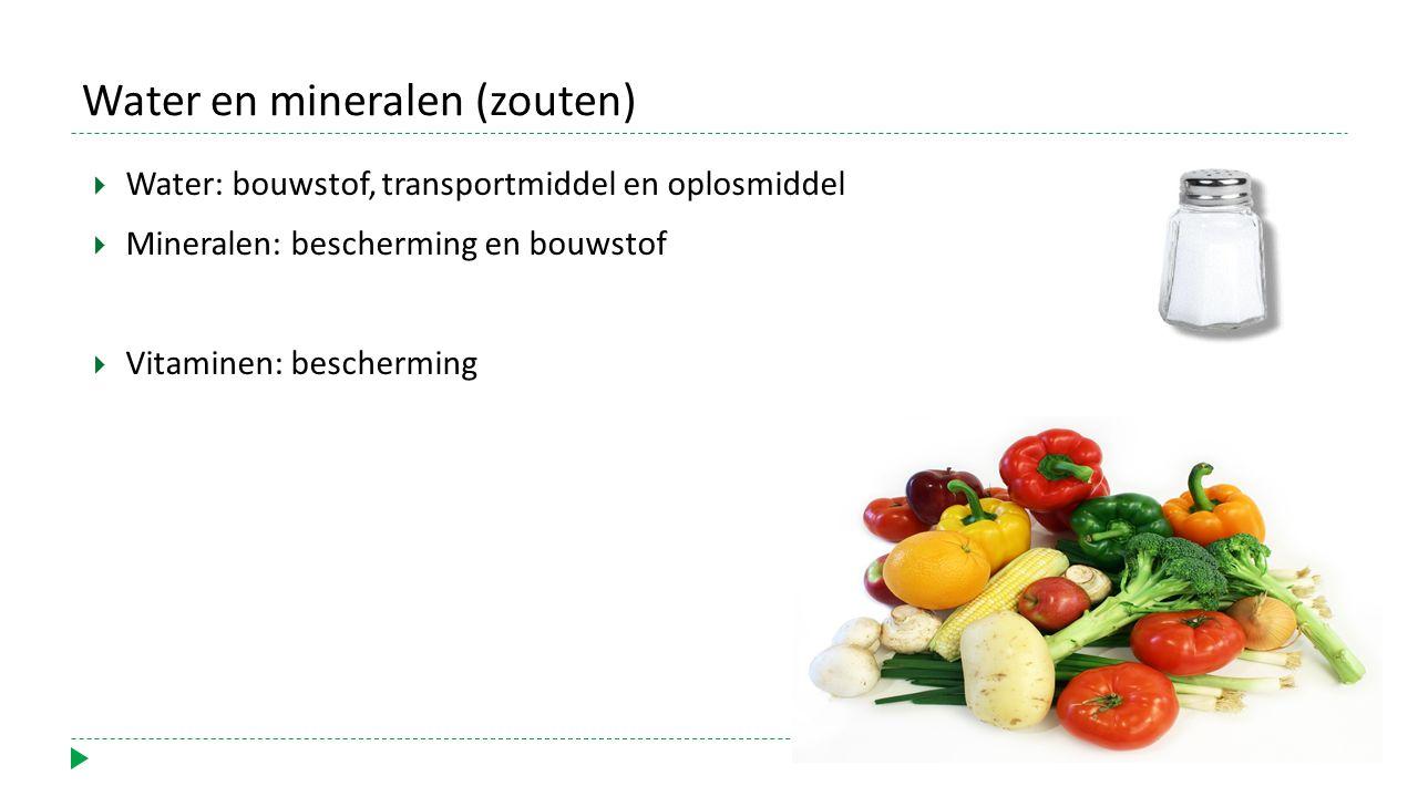 Water en mineralen (zouten)  Water: bouwstof, transportmiddel en oplosmiddel  Mineralen: bescherming en bouwstof  Vitaminen: bescherming