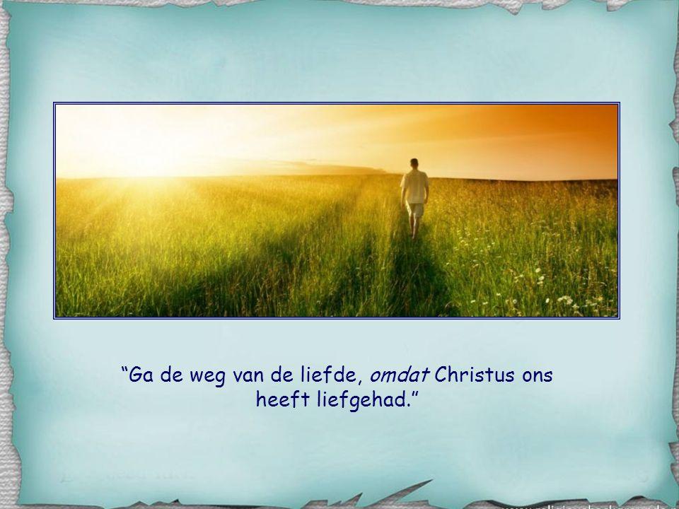 """Dat is alleen mogelijk als we zelf eerst de ervaring hebben opgedaan dat we bemind worden. In de zin: """"Ga de weg van de liefde, zoals Christus ons hee"""