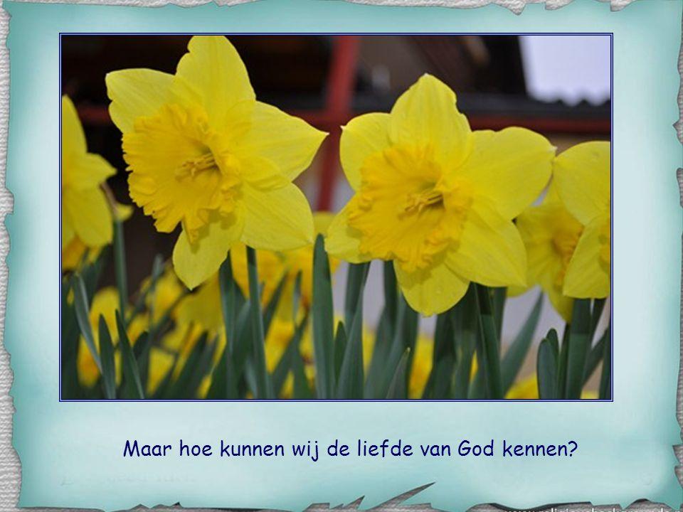 Maar hoe kunnen wij de liefde van God kennen?