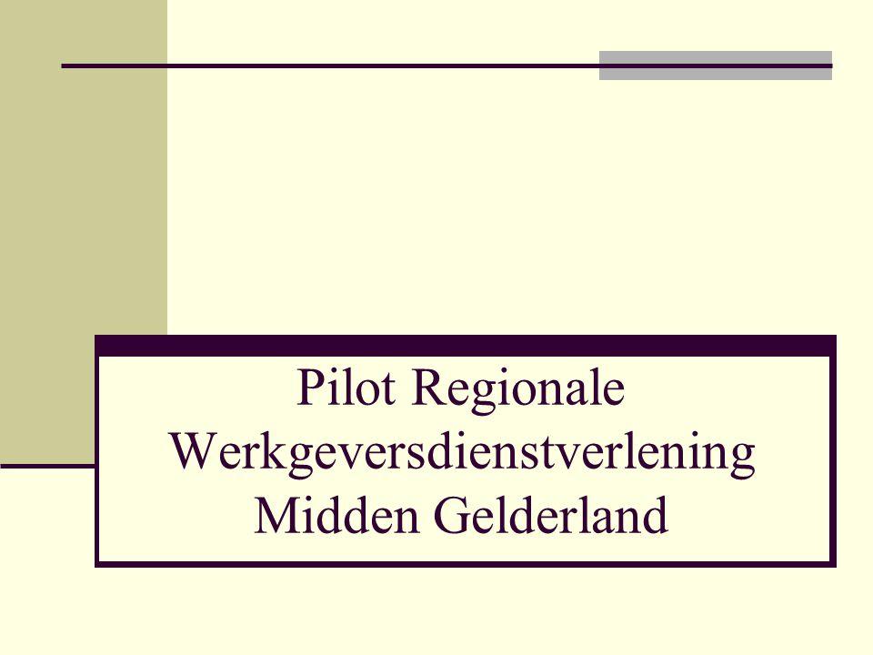 26 maart 2013 Pilot Regionale Werkgeversdienstverlening Midden Gelderland 12 Men vindt elkaar ook op andere sectoren Medewerkers willen graag gebruik maken van de gezamenlijke werkplek Geen feestje van centrumgemeente