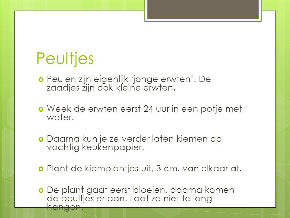  Peulen zijn eigenlijk 'jonge erwten'. De zaadjes zijn ook kleine erwten.