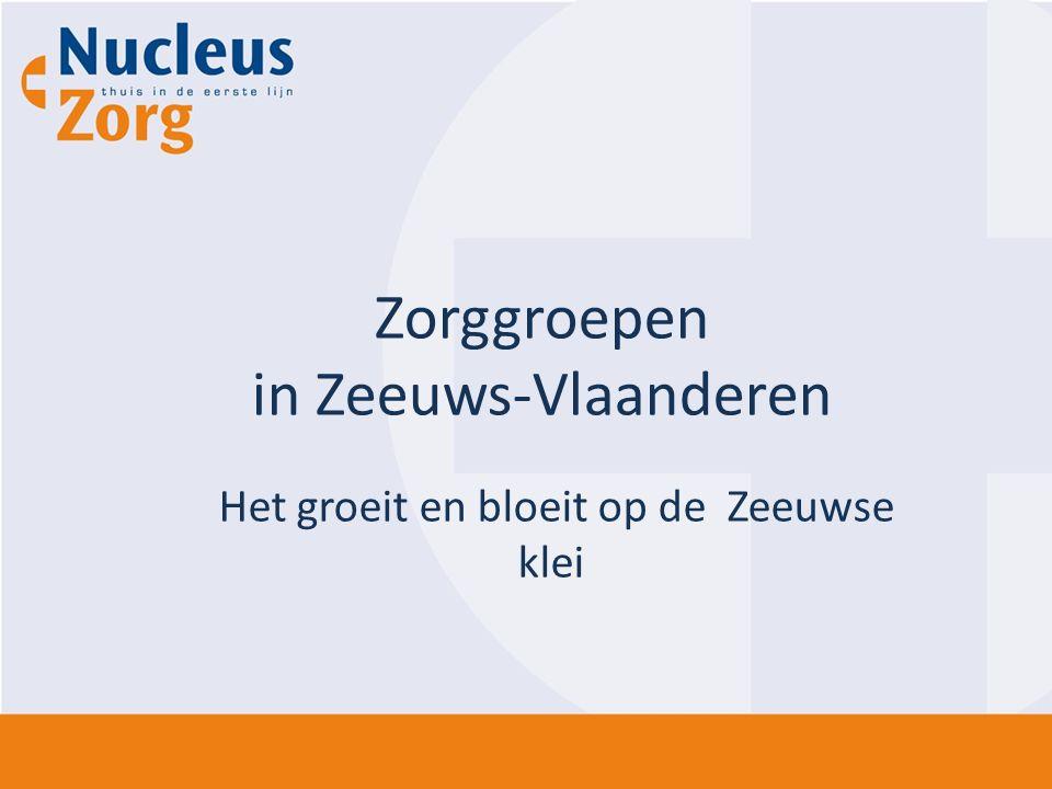 Het groeit en bloeit op de Zeeuwse klei Zorggroepen in Zeeuws-Vlaanderen