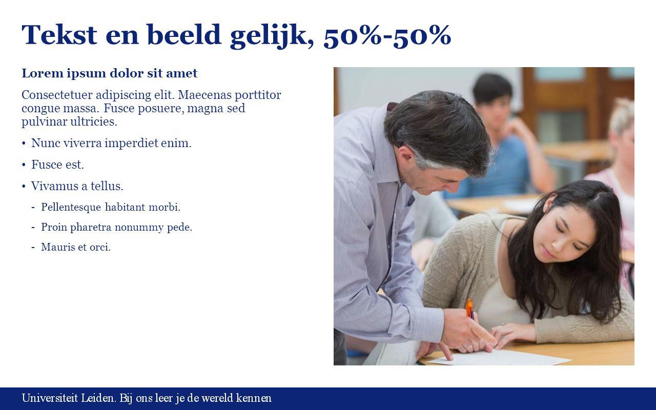 Tekst en beeld gelijk, 50%-50% Lorem ipsum dolor sit amet Consectetuer adipiscing elit.