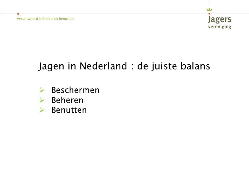 Jagen in Nederland : de juiste balans  Beschermen  Beheren  Benutten