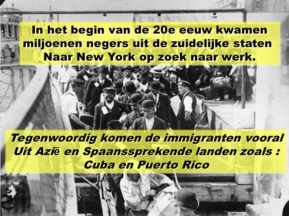 Tot 1820 kwam de bevolking van New York Uit Groot britanni ë en Nederland. Tussen 1820 en 1860 trok de stad Ierse en Duitse immigranten aan. Tussen 18