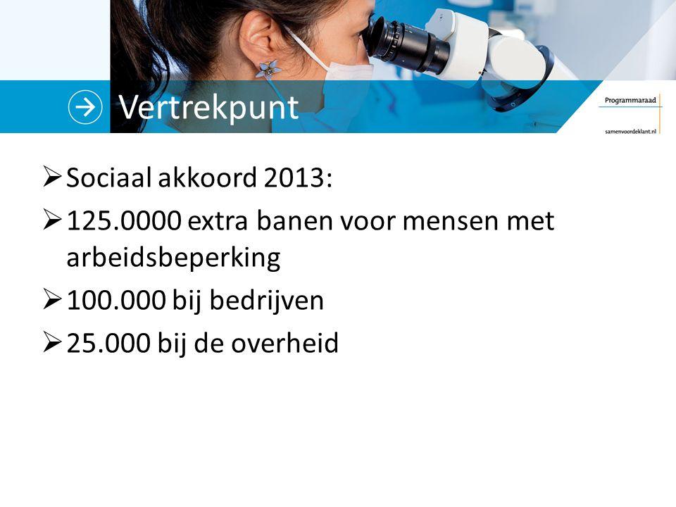 Vertrekpunt  Sociaal akkoord 2013:  125.0000 extra banen voor mensen met arbeidsbeperking  100.000 bij bedrijven  25.000 bij de overheid