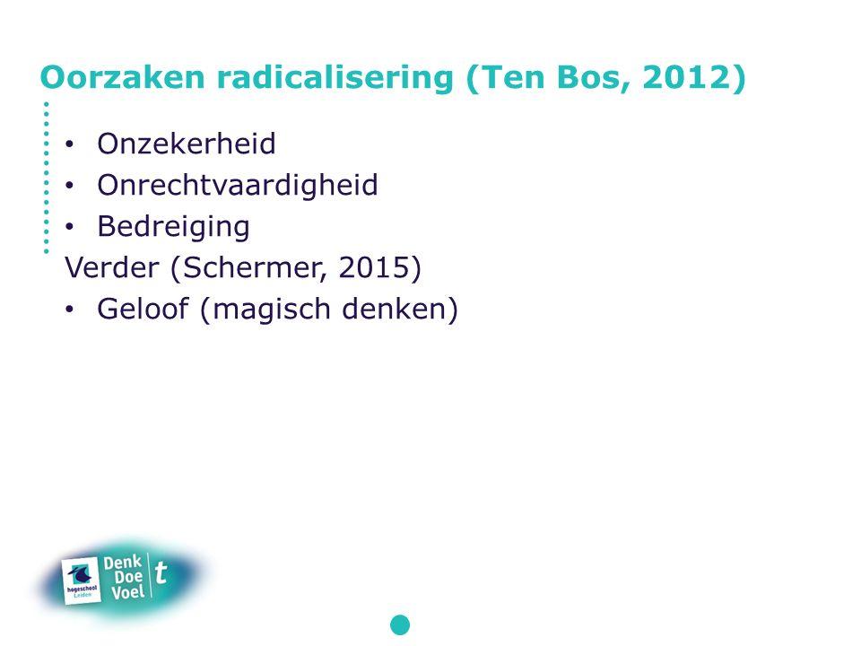 Onzekerheid Onrechtvaardigheid Bedreiging Verder (Schermer, 2015) Geloof (magisch denken) Oorzaken radicalisering (Ten Bos, 2012)