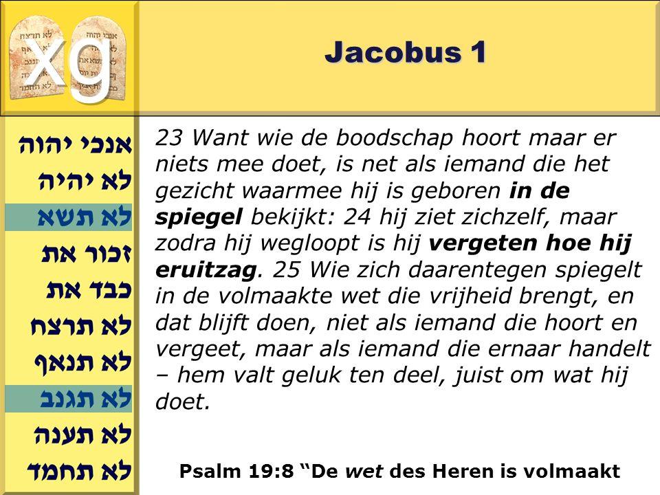 Gerard J.Wijtsma Jacobus 1 23 Want wie de boodschap hoort maar er niets mee doet, is net als iemand die het gezicht waarmee hij is geboren in de spiegel bekijkt: 24 hij ziet zichzelf, maar zodra hij wegloopt is hij vergeten hoe hij eruitzag.