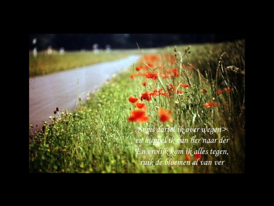 Soms dartel ik over wegen> en huppel ik van her naar der En vrolijk kom ik alles tegen, ruik de bloemen al van ver