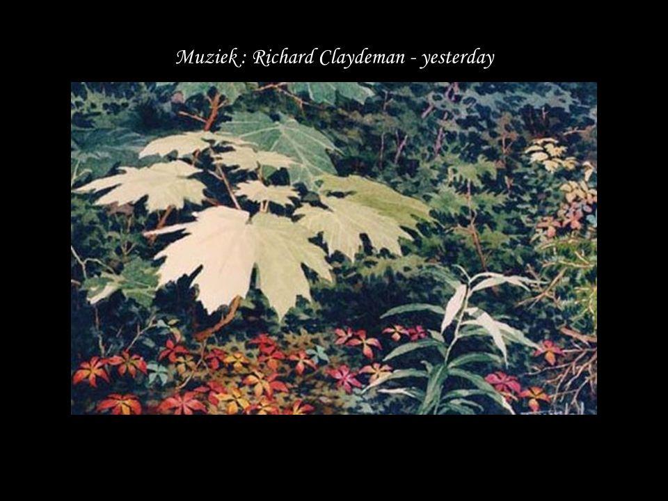 Muziek : Richard Claydeman - yesterday