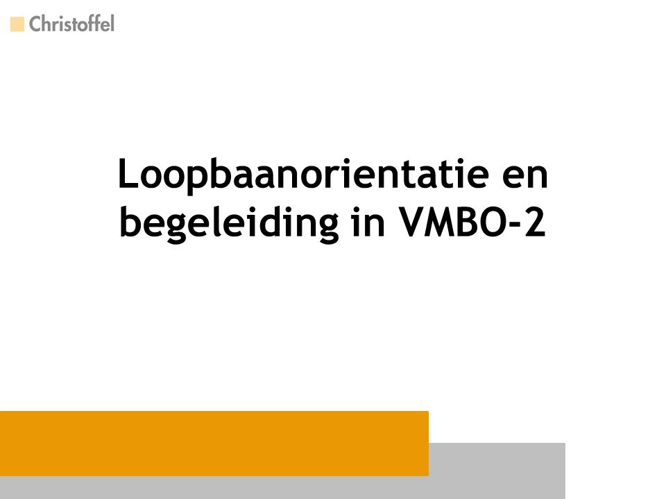 Loopbaanorientatie en begeleiding in VMBO-2