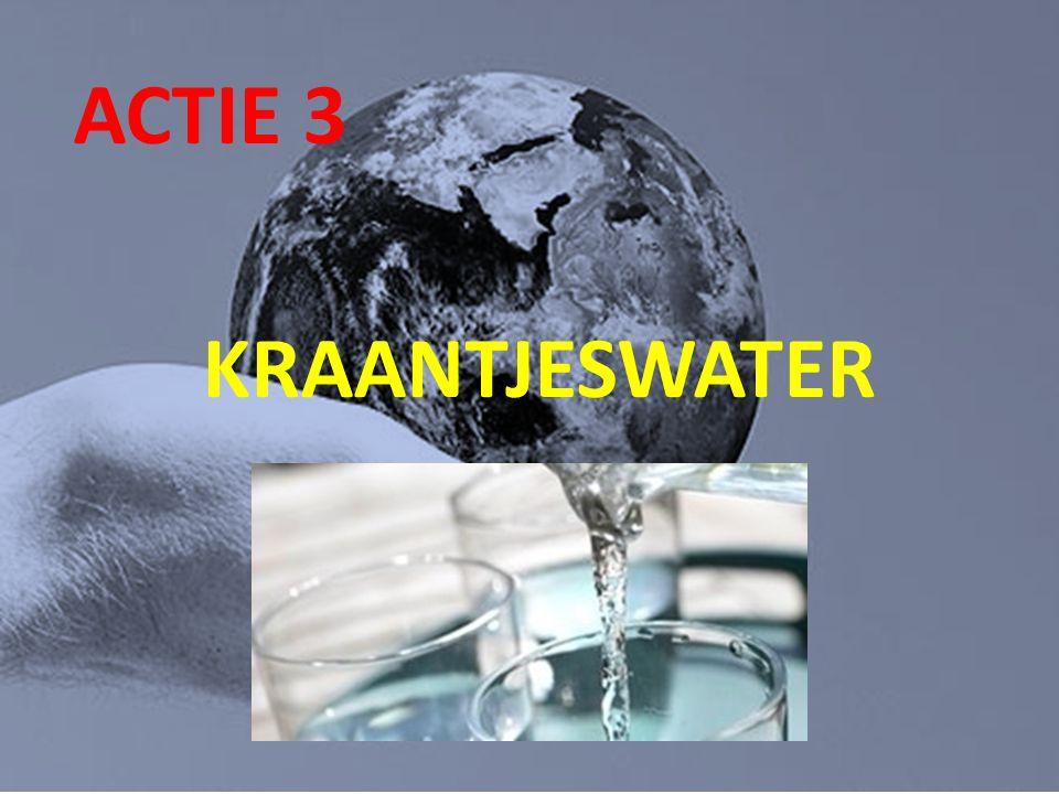 ACTIE 3 KRAANTJESWATER