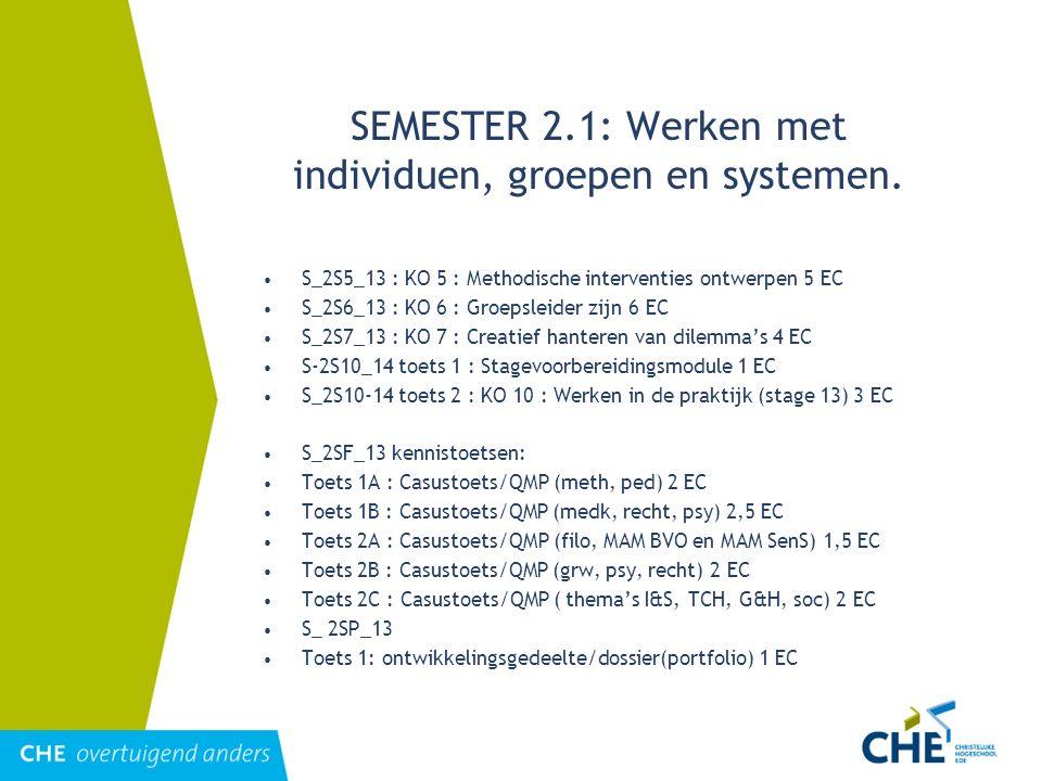SEMESTER 2.1: Werken met individuen, groepen en systemen. S_2S5_13 : KO 5 : Methodische interventies ontwerpen 5 EC S_2S6_13 : KO 6 : Groepsleider zij