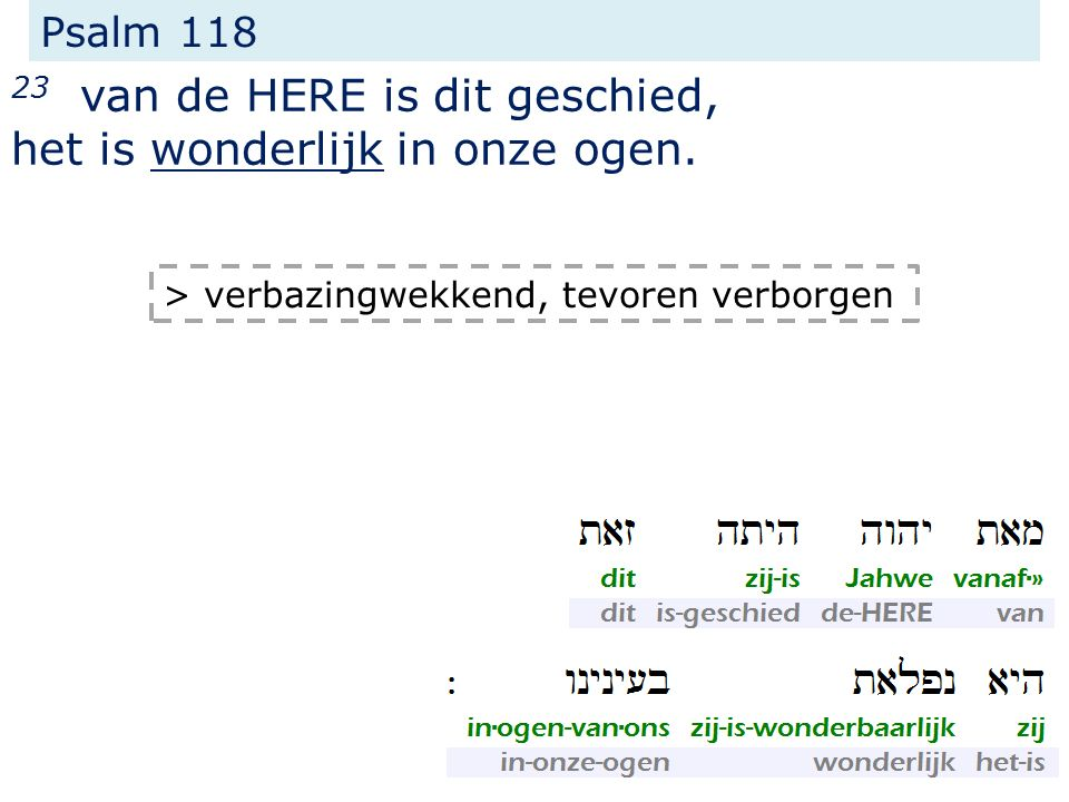 Psalm 118 23 van de HERE is dit geschied, het is wonderlijk in onze ogen.