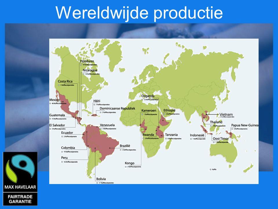 Wereldwijde productie