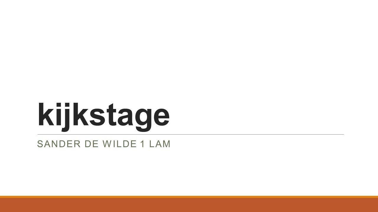 kijkstage SANDER DE WILDE 1 LAM