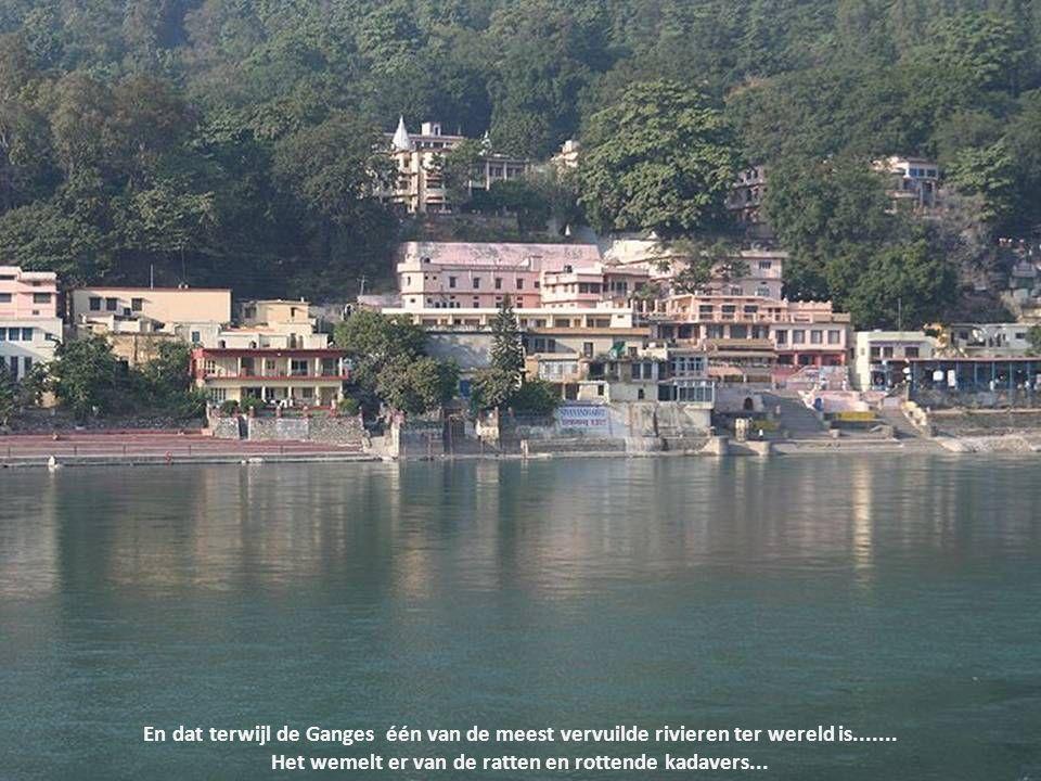 Jaarlijks trekken miljoenen hindoes naar steden aan de Ganges om hun ziel te reinigen door zich te wassen in de rivier.