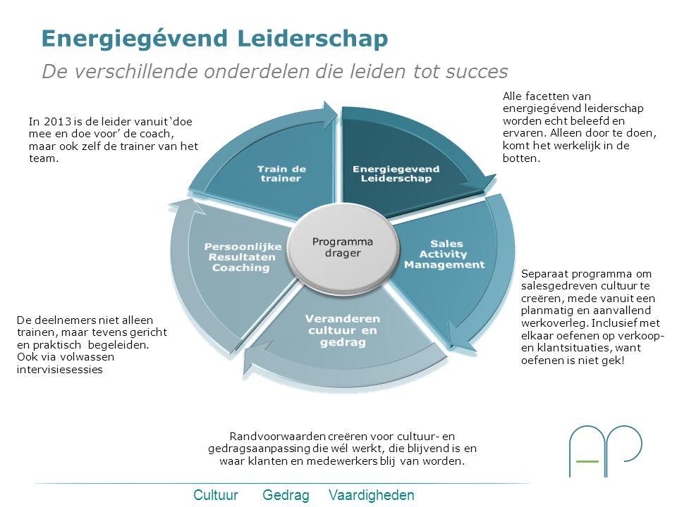 Cultuur Gedrag Vaardigheden Energiegévend Leiderschap De verschillende onderdelen die leiden tot succes Alle facetten van energiegévend leiderschap worden echt beleefd en ervaren.