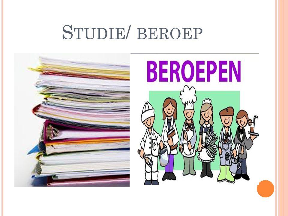 S TUDIE / BEROEP
