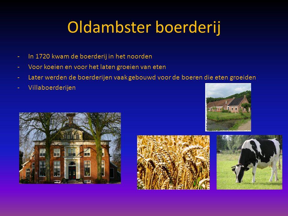 Oldambster boerderij -In 1720 kwam de boerderij in het noorden -Voor koeien en voor het laten groeien van eten -Later werden de boerderijen vaak gebou