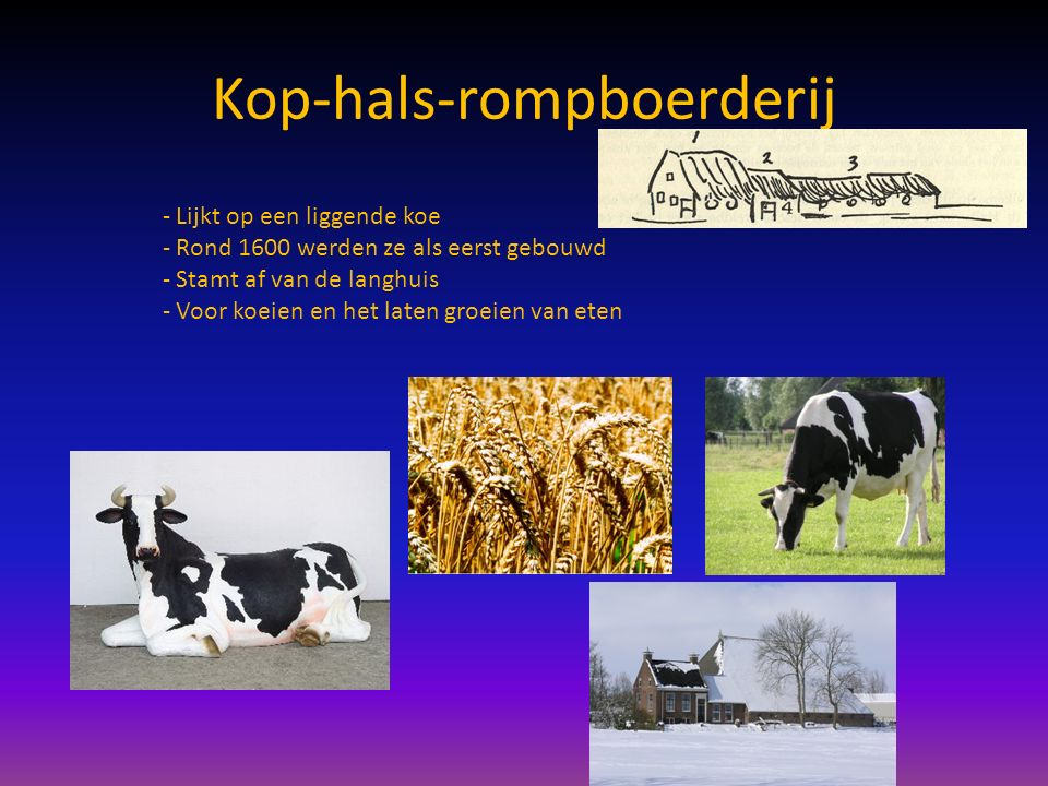 Kop-hals-rompboerderij - Lijkt op een liggende koe - Rond 1600 werden ze als eerst gebouwd - Stamt af van de langhuis - Voor koeien en het laten groeien van eten