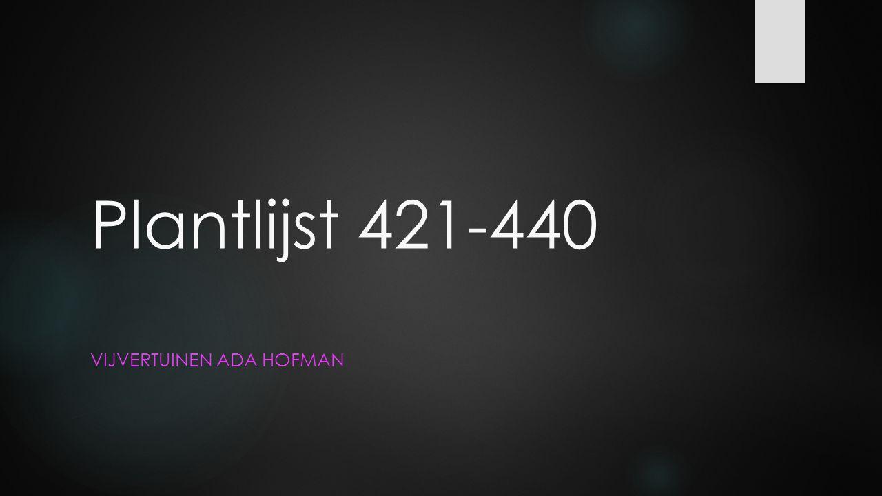 Plantlijst 421-440 VIJVERTUINEN ADA HOFMAN