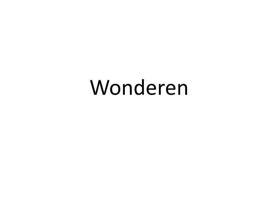 Wonderen