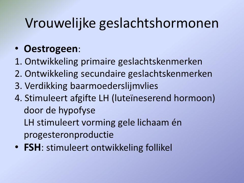 Vrouwelijke geslachtshormonen Oestrogeen : 1. Ontwikkeling primaire geslachtskenmerken 2. Ontwikkeling secundaire geslachtskenmerken 3. Verdikking baa