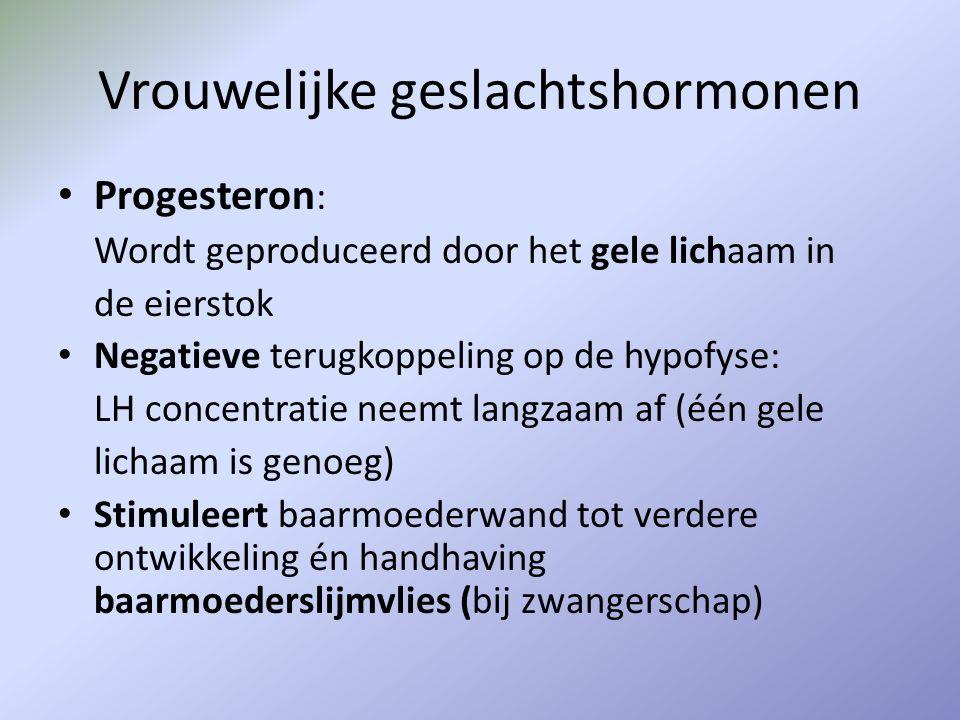 Vrouwelijke geslachtshormonen Progesteron : Wordt geproduceerd door het gele lichaam in de eierstok Negatieve terugkoppeling op de hypofyse: LH concen