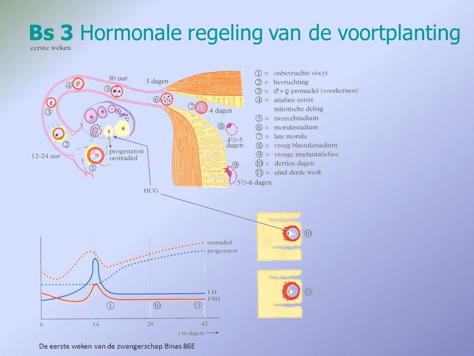 Bs 3Hormonale regeling van de voortplanting De eerste weken van de zwangerschap Binas 86E