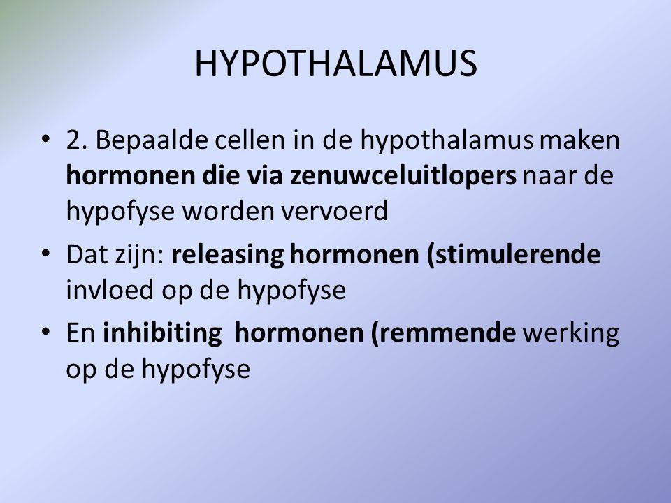 HYPOTHALAMUS 2. Bepaalde cellen in de hypothalamus maken hormonen die via zenuwceluitlopers naar de hypofyse worden vervoerd Dat zijn: releasing hormo