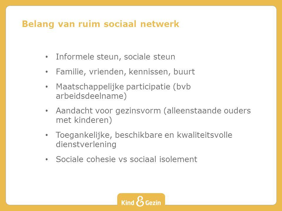 Informele steun, sociale steun Familie, vrienden, kennissen, buurt Maatschappelijke participatie (bvb arbeidsdeelname) Aandacht voor gezinsvorm (allee