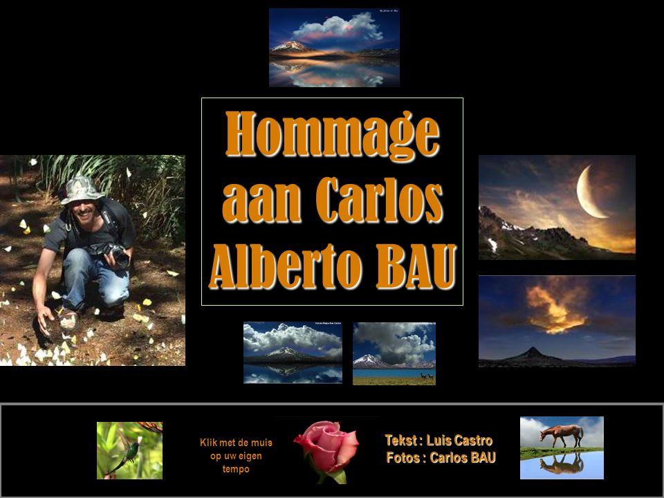 Klik met de muis op uw eigen tempo Tekst : Luis Castro Fotos : Carlos BAU Hommage aan Carlos Alberto BAU