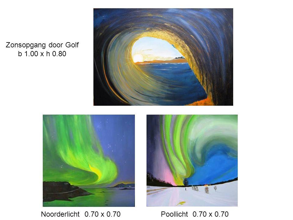 Zonsopgang door Golf b 1.00 x h 0.80 Noorderlicht 0.70 x 0.70Poollicht 0.70 x 0.70