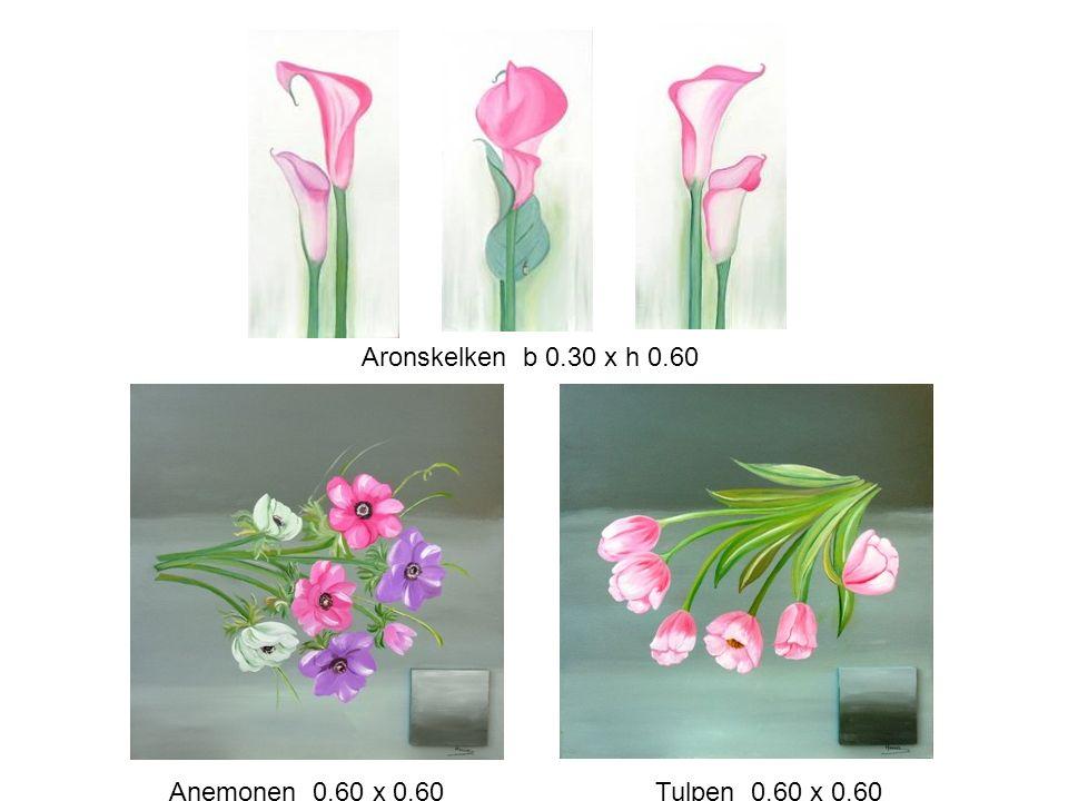 Aronskelken b 0.30 x h 0.60 Anemonen 0.60 x 0.60 Tulpen 0.60 x 0.60