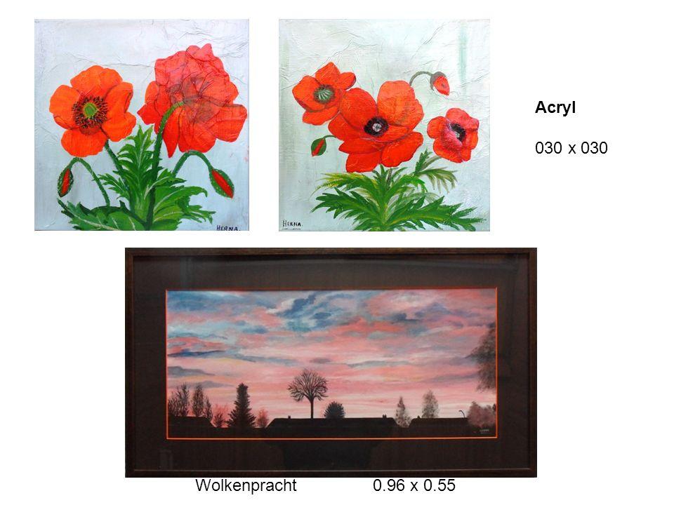 Acryl 030 x 030 Wolkenpracht 0.96 x 0.55