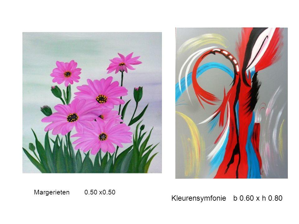Kleurensymfonie b 0.60 x h 0.80 Margerieten 0.50 x0.50