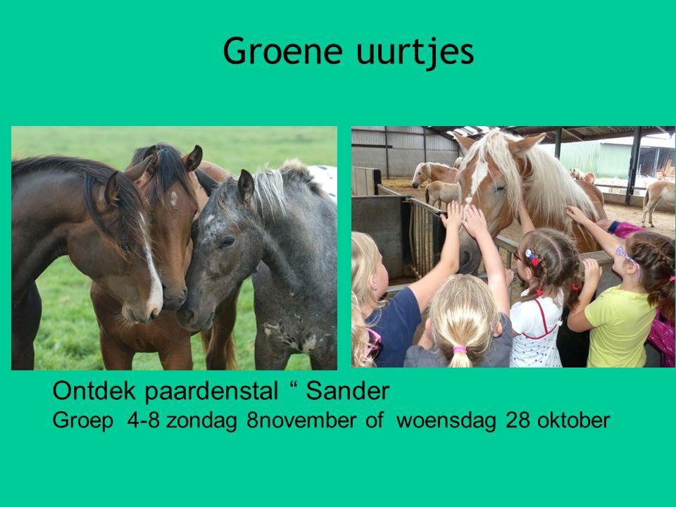 """Groene uurtjes Ontdek paardenstal """" Sander Groep 4-8 zondag 8november of woensdag 28 oktober"""