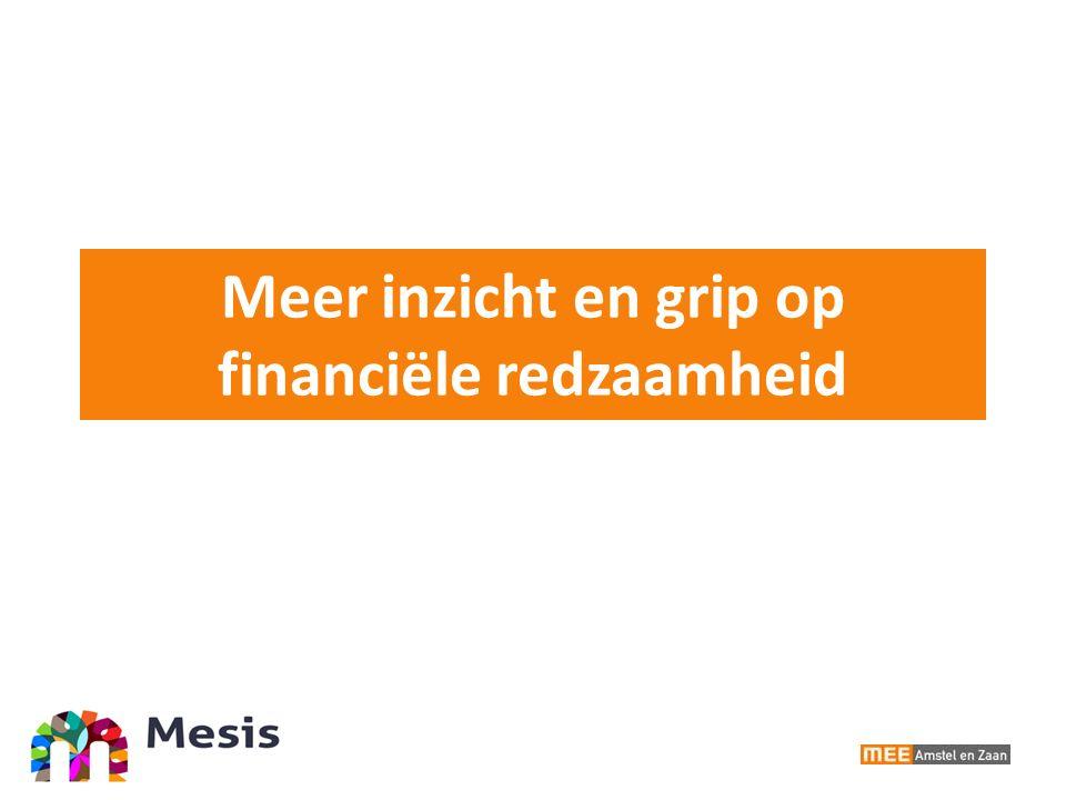 Meer inzicht en grip op financiële redzaamheid