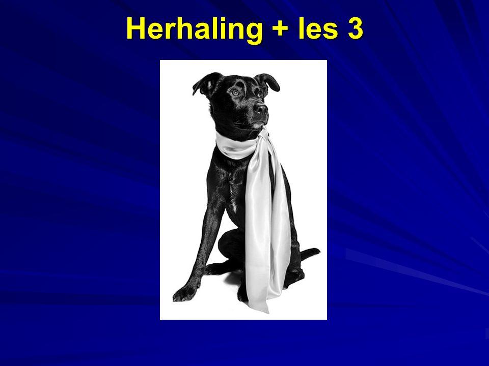 Herhaling + les 3