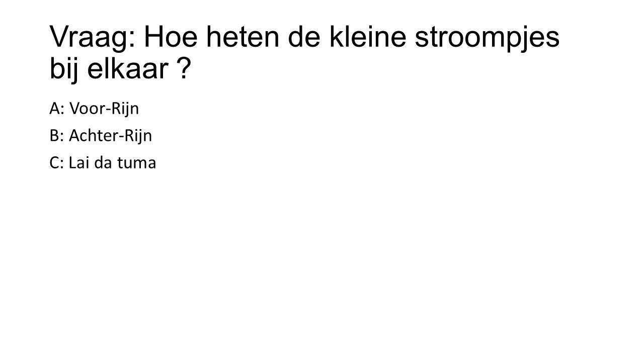 Vraag: Hoe heten de kleine stroompjes bij elkaar ? A: Voor-Rijn B: Achter-Rijn C: Lai da tuma